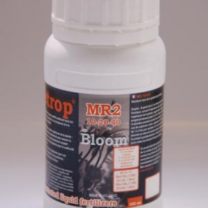 Metrop MR2 250