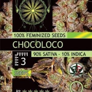 Chocoloco Fem 3