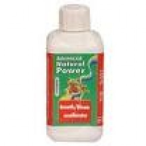 GROWTH/BLOOM Excellerator 250 Ml