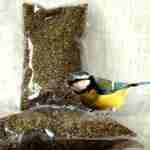 Semi Di Canapa Per Uccelli