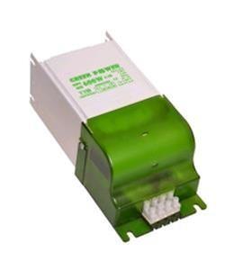 ALIMENTATORE Green Power 250 W