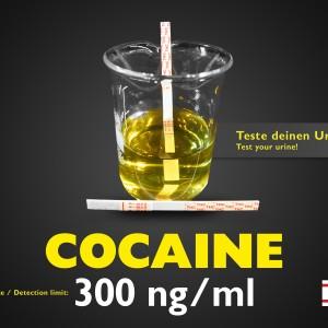 Test delle urine Striscia Cocaina standard 300