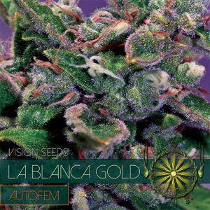 LA BLANCA GOLD AUTO 5