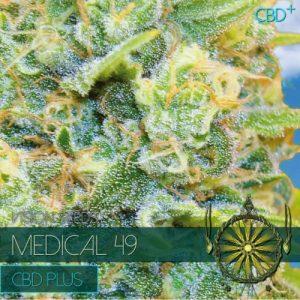 MEDICAL 49 CBD Fem 3